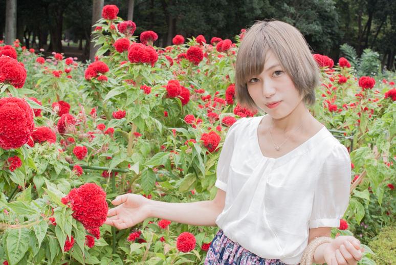 赤い花の花壇に立つ女の子